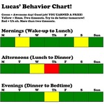 Color-coded behavior chart works for parents AND kids