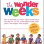 What are the best parenting and baby-care books?