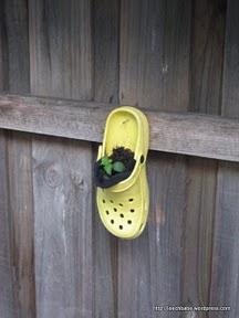 crocs-hanging-garden
